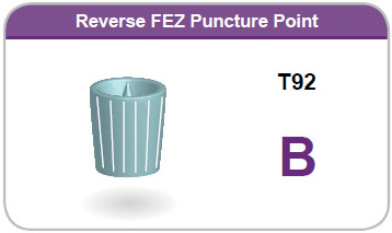 Reverse FEZ Puncture Point B