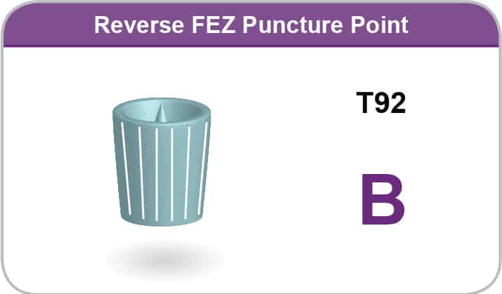 FEZ Puncture Point T11, M9, M7 A
